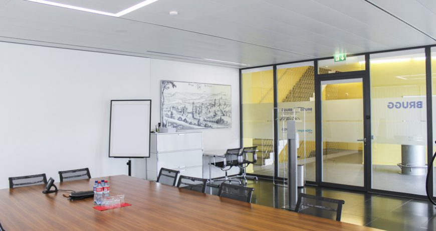 brugg-group-real-estate-immobilien-aargau-flex-co-working-space-suhner-office-10